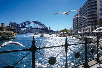 澳大利亚房产投资前景如何?